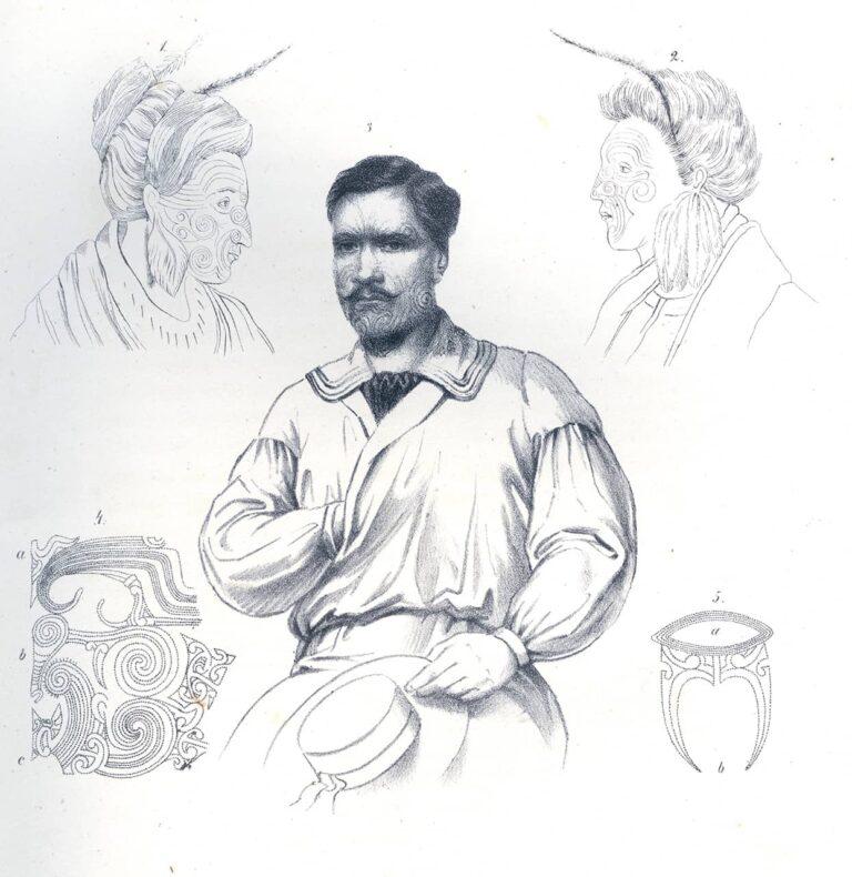 Stanovnici Novog Zelanda, Josef Selleny 1957. - 1859, Viaggio intorno al globo della fregata Novara negli anni 1857, 1858, 1859, Beč 1865.